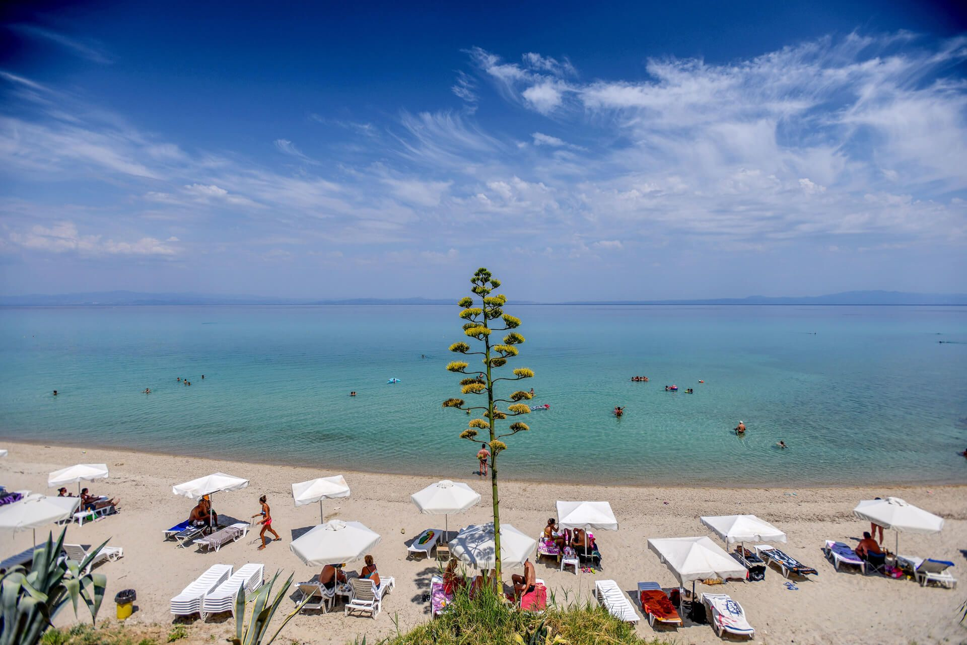 Agora beach – Greek Kouzina & Beach Bar